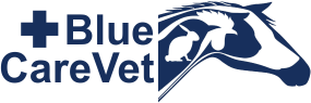 Blue Care Vet